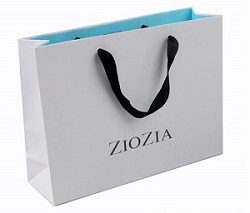white and blue ZIOZIA Branded Paper Bags